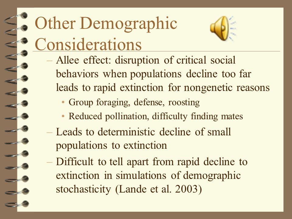 Other Demographic Considerations –Allee effect: disruption of critical social behaviors when populations decline too far leads to rapid extinction for nongenetic reasons Group foraging, defense, roosting Reduced pollination, difficulty finding mates –Leads to deterministic decline of small populations to extinction –Difficult to tell apart from rapid decline to extinction in simulations of demographic stochasticity (Lande et al.