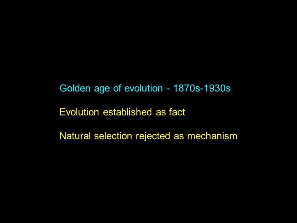Golden age of evolution - 1870s-1930s Evolution established as fact Natural selection rejected as mechanism