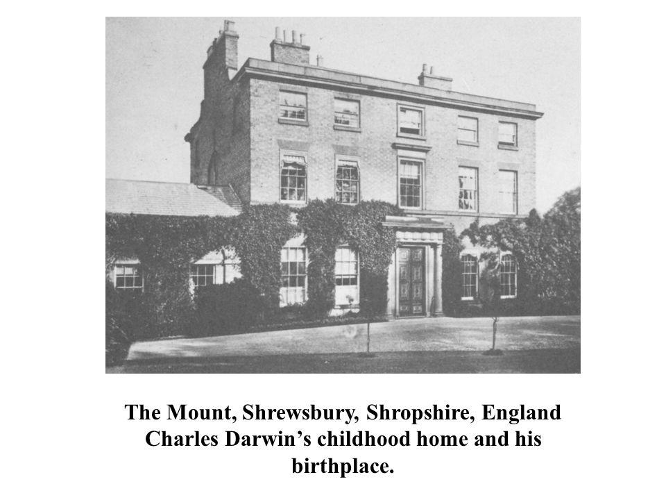 The Mount, Shrewsbury, Shropshire, England Charles Darwin's childhood home and his birthplace.