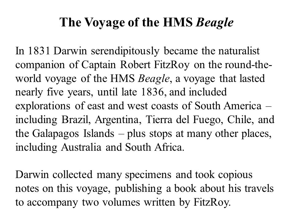 The Voyage of the HMS Beagle In 1831 Darwin serendipitously became the naturalist companion of Captain Robert FitzRoy on the round-the- world voyage of the HMS Beagle, a voyage that lasted nearly five years, until late 1836, and included explorations of east and west coasts of South America – including Brazil, Argentina, Tierra del Fuego, Chile, and the Galapagos Islands – plus stops at many other places, including Australia and South Africa.