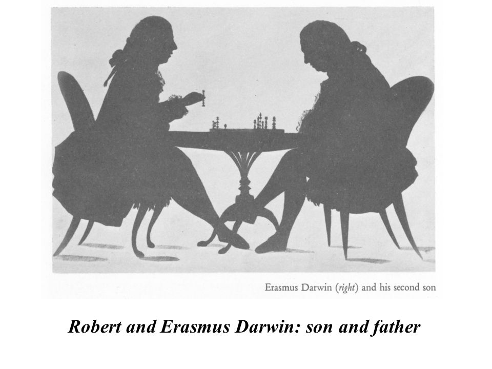 Robert and Erasmus Darwin: son and father