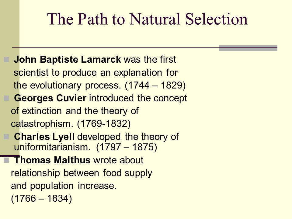 The Path to Natural Selection John Baptiste Lamarck was the first scientist to produce an explanation for the evolutionary process.