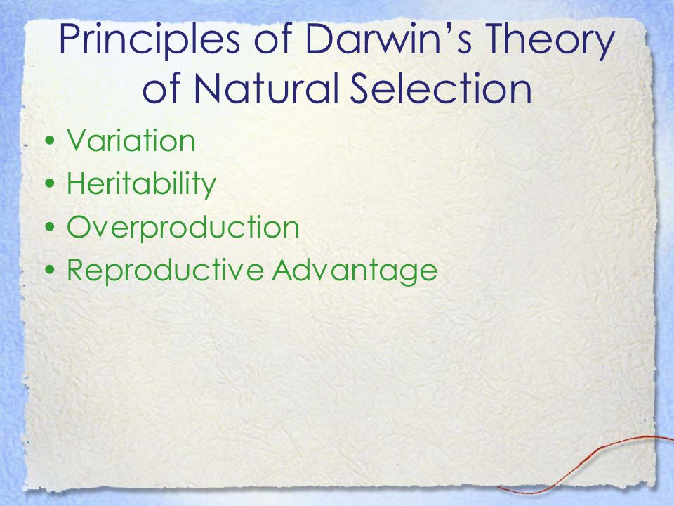 Principles of Darwin's Theory of Natural Selection Variation Heritability Overproduction Reproductive Advantage