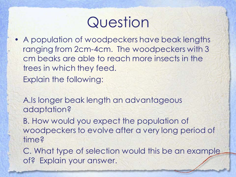 Question A population of woodpeckers have beak lengths ranging from 2cm-4cm. The woodpeckers with 3 cm beaks are able to reach more insects in the tre