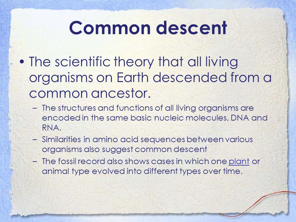 Biological Change Identifying change in species