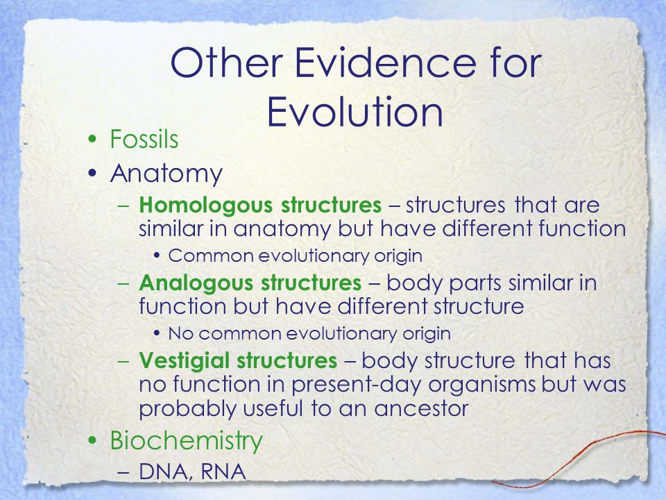 Other Evidence for Evolution Fossils Anatomy – Homologous structures – structures that are similar in anatomy but have different function Common evolu