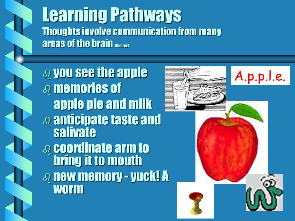 Learning Pathways Some links grow while others fade Each time you learn something new, new dendrites are grown on your neurons to communicate with oth