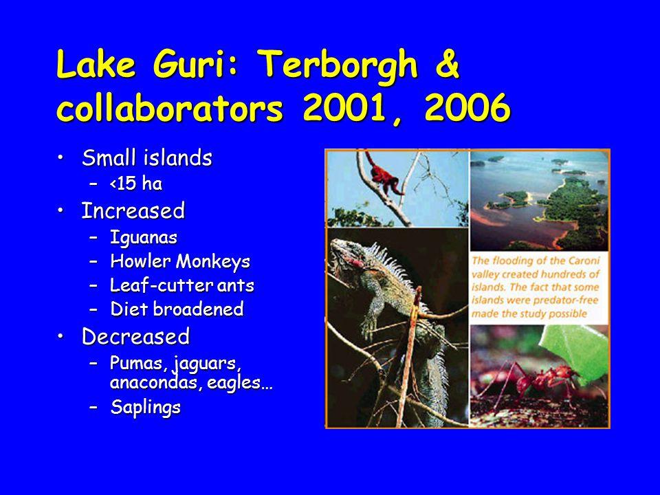 Small islandsSmall islands –<15 ha IncreasedIncreased –Iguanas –Howler Monkeys –Leaf-cutter ants –Diet broadened DecreasedDecreased –Pumas, jaguars, anacondas, eagles… –Saplings