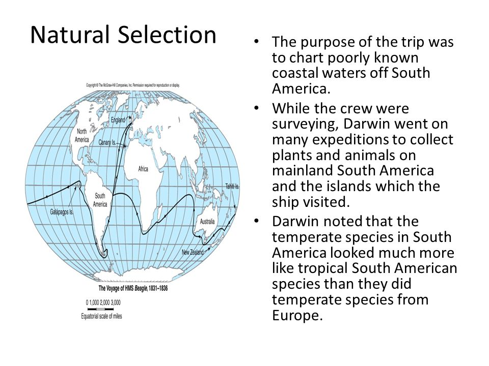 Natural Selection The purpose of the trip was to chart poorly known coastal waters off South America. While the crew were surveying, Darwin went on ma