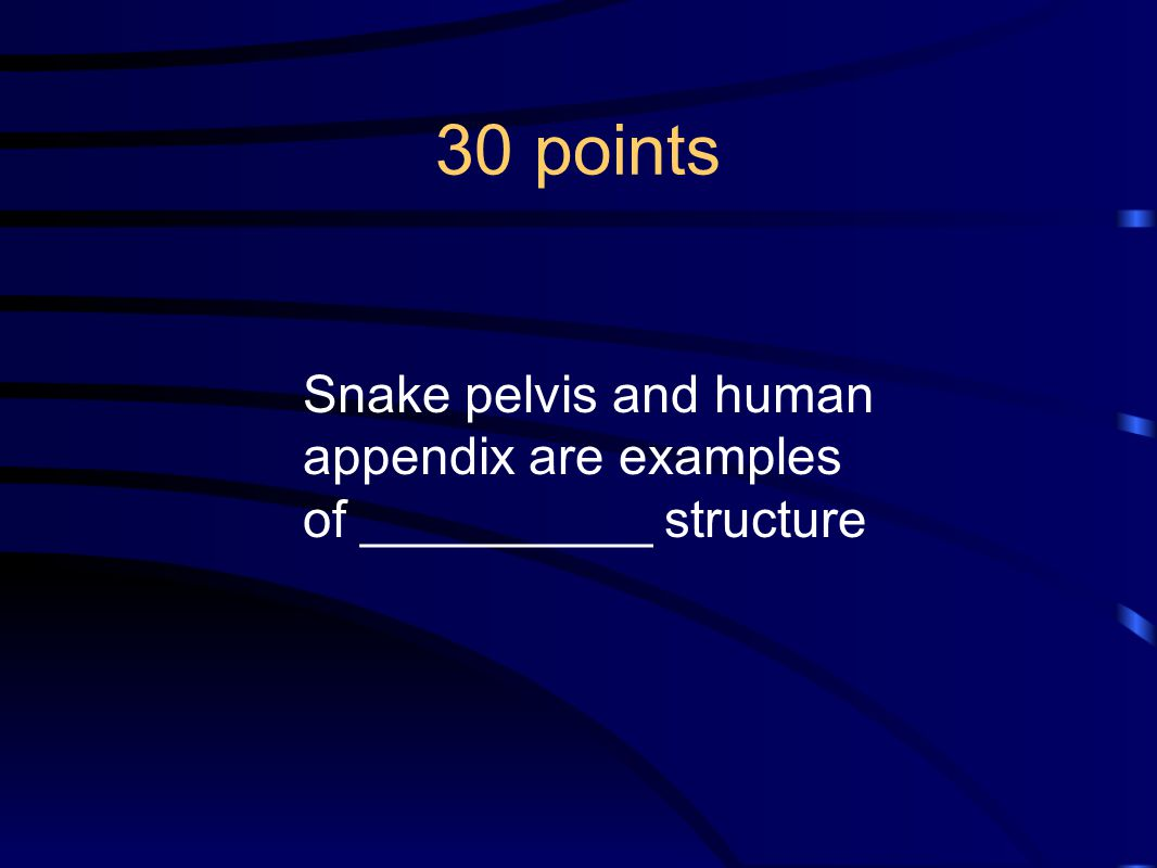 30 points Snake pelvis and human appendix are examples of __________ structure