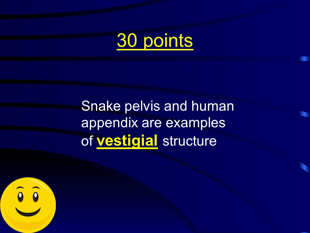 30 points Snake pelvis and human appendix are examples of vestigial structure
