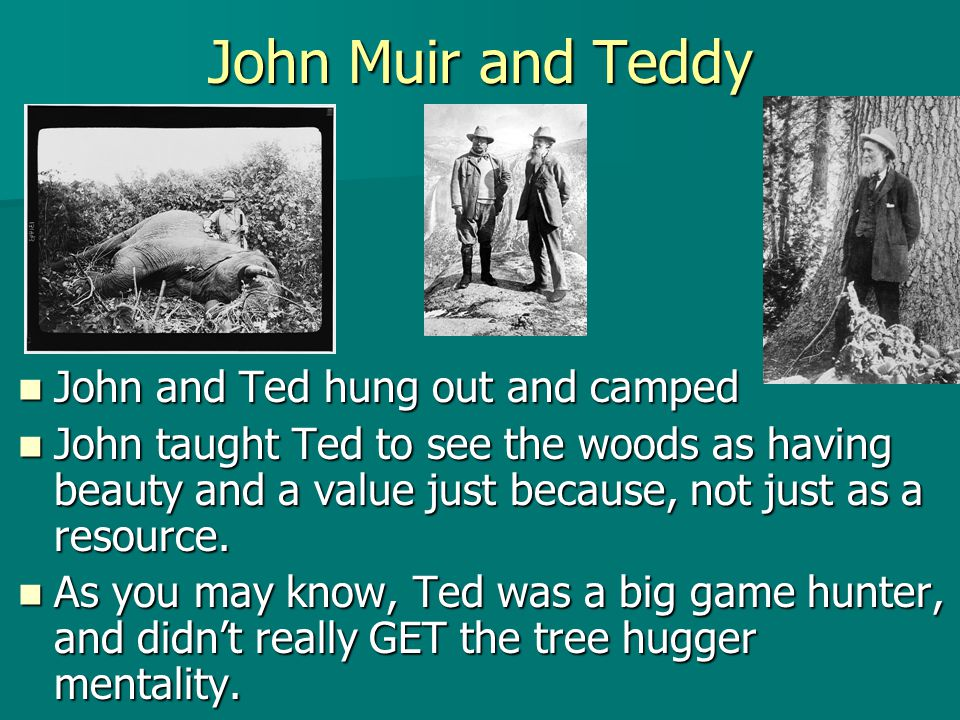 John Muir and Teddy John and Ted hung out and camped John and Ted hung out and camped John taught Ted to see the woods as having beauty and a value ju