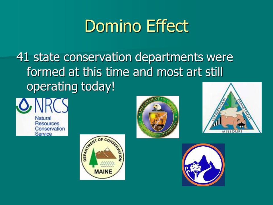 Domino Effect 41 state conservation departments were formed at this time and most art still operating today!