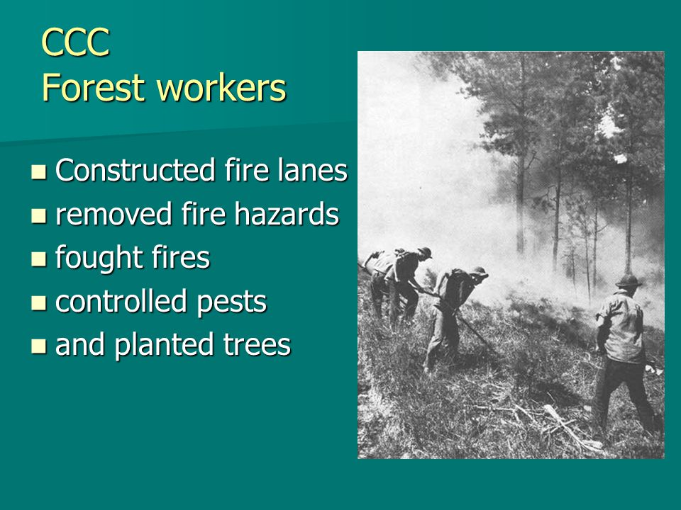 CCC Forest workers Constructed fire lanes Constructed fire lanes removed fire hazards removed fire hazards fought fires fought fires controlled pests
