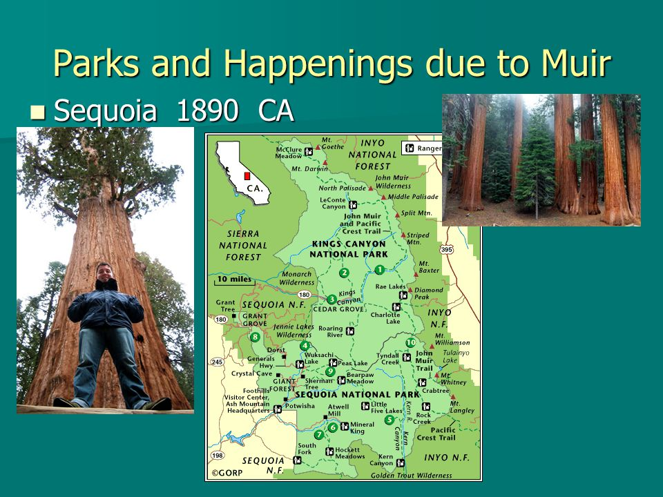 Parks and Happenings due to Muir Sequoia 1890 CA Sequoia 1890 CA