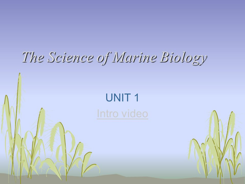 The Science of Marine Biology UNIT 1 Intro video