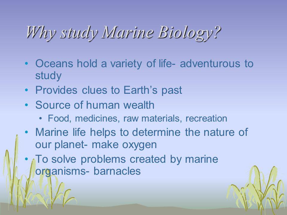 Why study Marine Biology.
