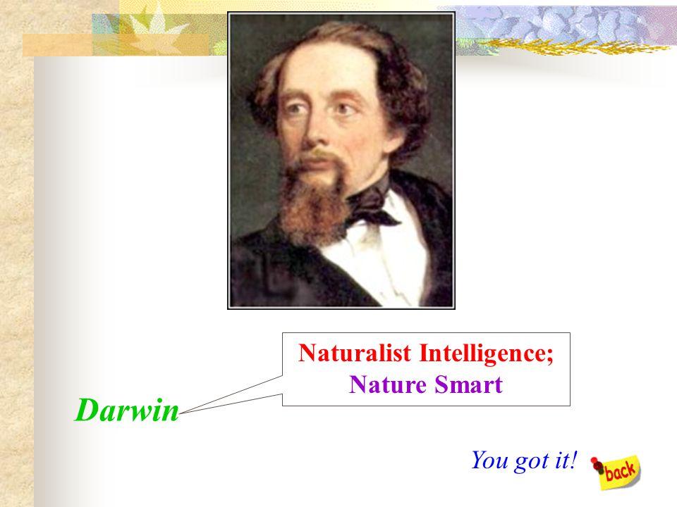Mozart Musical Intelligence; Music Smart