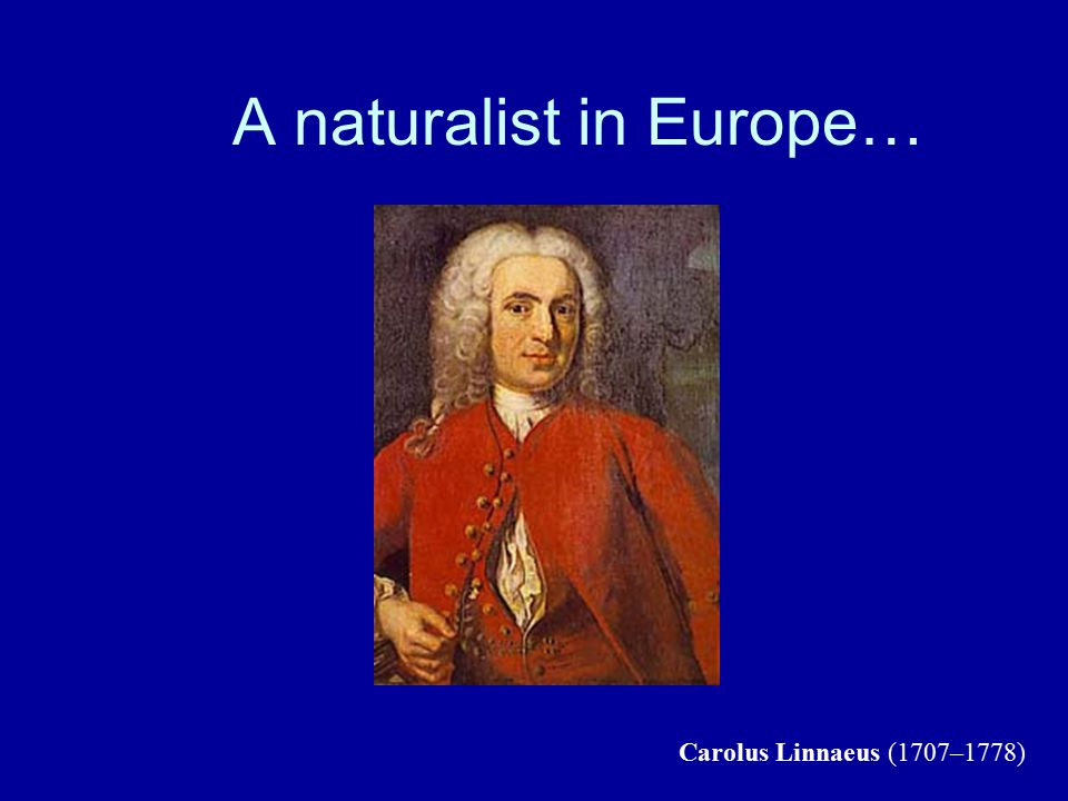 A naturalist in Europe… Carolus Linnaeus (1707–1778)