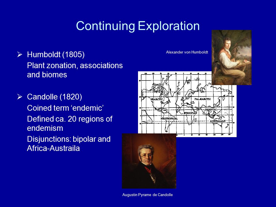 Continuing Exploration  Humboldt (1805) Plant zonation, associations and biomes  Candolle (1820) Coined term 'endemic' Defined ca. 20 regions of end