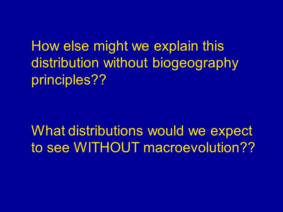 How else might we explain this distribution without biogeography principles?? What distributions would we expect to see WITHOUT macroevolution??