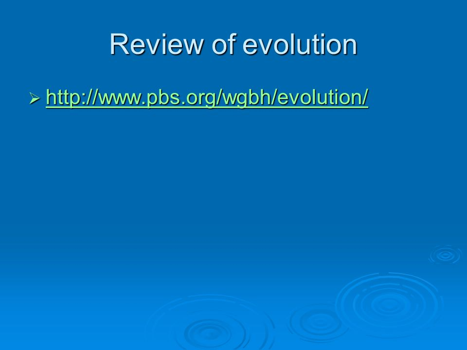 Review of evolution  http://www.pbs.org/wgbh/evolution/ http://www.pbs.org/wgbh/evolution/