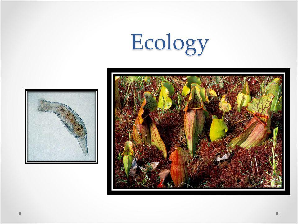 Assignment Read material regarding Pacific Tree frogs in chapter 1 Pseudacris regilla
