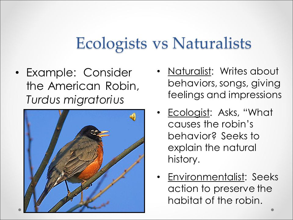 Ecologist vs Environmental Scientist Environmental science is to Ecology as Engineering is to Physics.