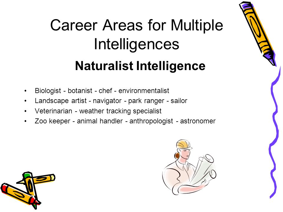 Career Areas for Multiple Intelligences Naturalist Intelligence Biologist - botanist - chef - environmentalist Landscape artist - navigator - park ranger - sailor Veterinarian - weather tracking specialist Zoo keeper - animal handler - anthropologist - astronomer