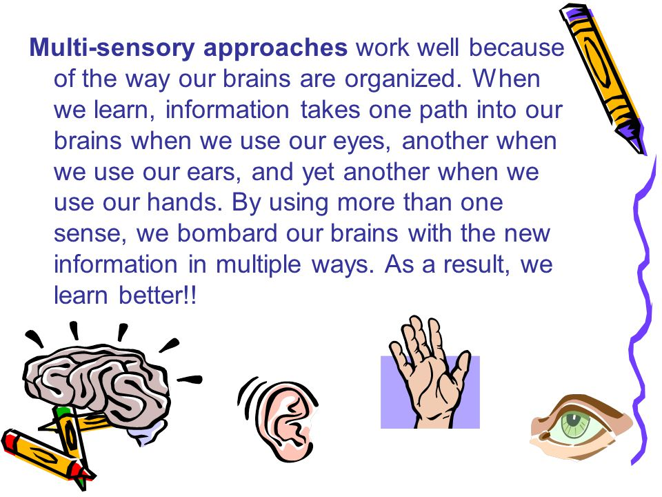 Multi-sensory approaches work well because of the way our brains are organized.