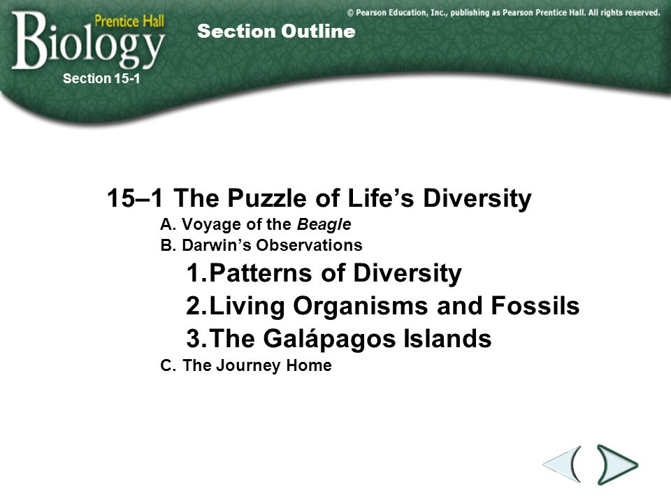 Go to Section: Homologous Structures