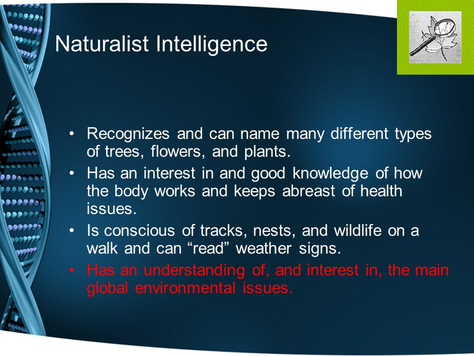 Naturalist Intelligence Recognizes and can name many different types of trees, flowers, and plants.