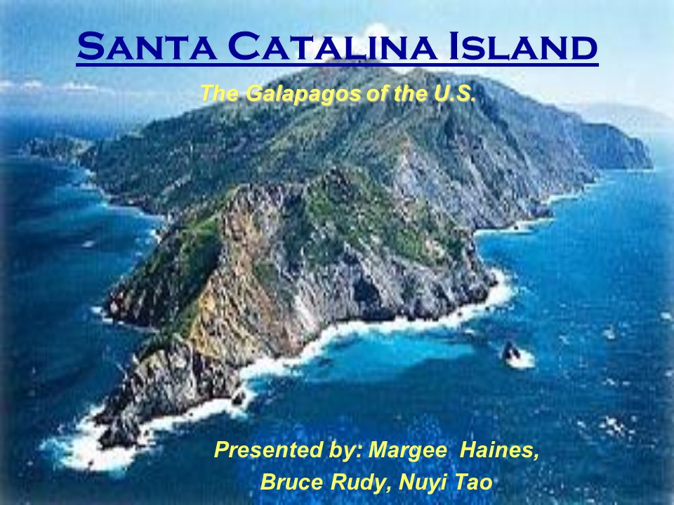 Santa Catalina Facts Volcanic Island, 22- miles from CA 50,000 acres Widest diversity of plants and animals among Channel Islands Economic, recreational, and scientific uses