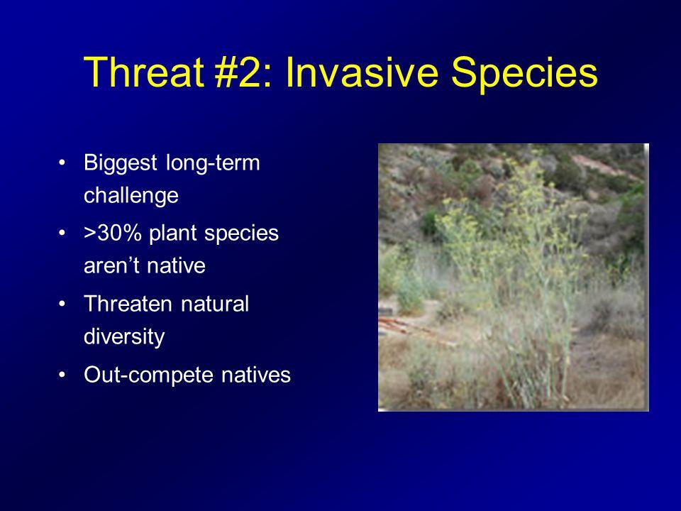 Threat #3: Sensitive Species Catalina Island Fox Bald Eagles Catalina Mahogany Beechey Ground Squirrel Rattleless Rattlesnake Santa Catalina Monkey Flower