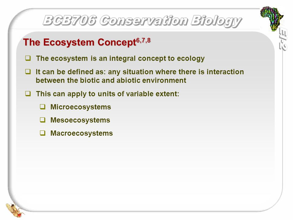   The ecosystem is an integral concept to ecology   It can be defined as: any situation where there is interaction between the biotic and abiotic environment   This can apply to units of variable extent:   Microecosystems   Mesoecosystems   Macroecosystems The Ecosystem Concept 6,7,8