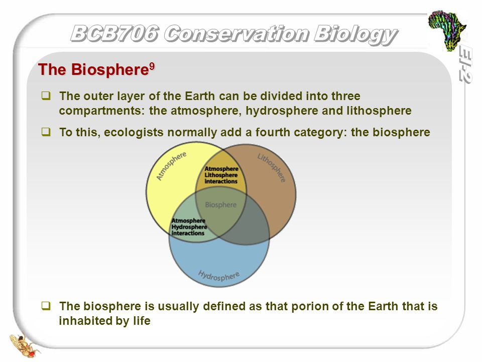   The outer layer of the Earth can be divided into three compartments: the atmosphere, hydrosphere and lithosphere   To this, ecologists normally add a fourth category: the biosphere   The biosphere is usually defined as that porion of the Earth that is inhabited by life The Biosphere 9