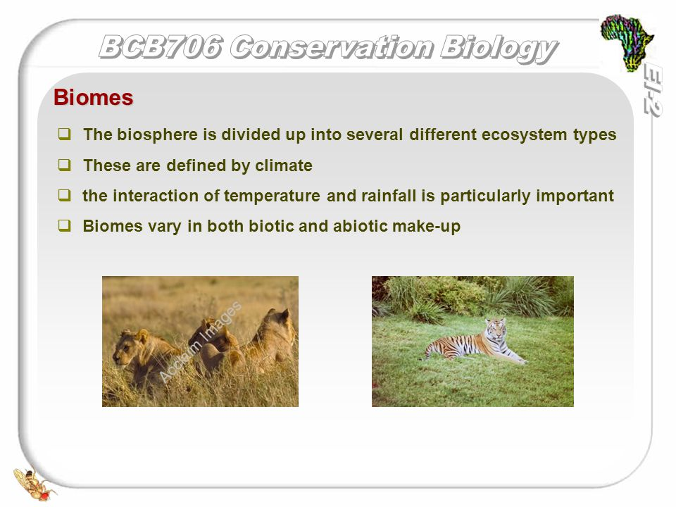   The biosphere is divided up into several different ecosystem types   These are defined by climate   the interaction of temperature and rainfall is particularly important   Biomes vary in both biotic and abiotic make-up Biomes