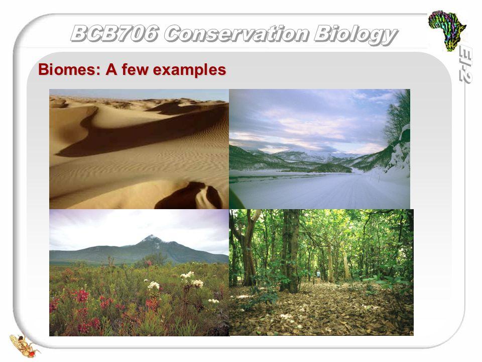Biomes: A few examples