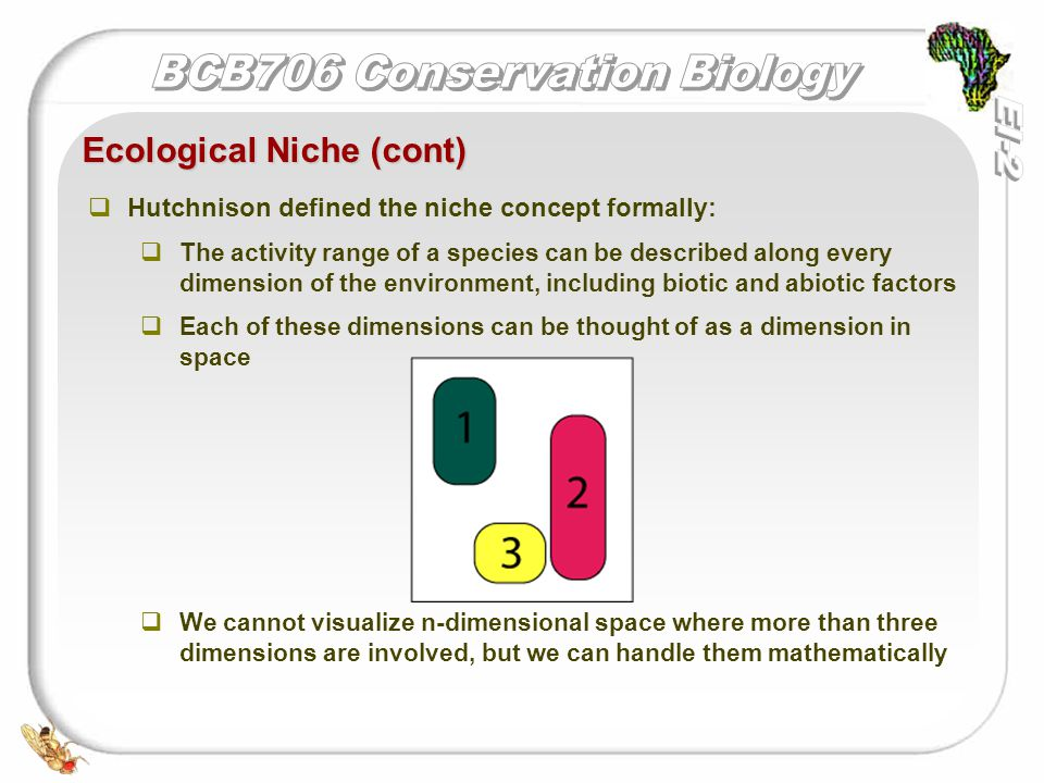   Hutchnison defined the niche concept formally:   The activity range of a species can be described along every dimension of the environment, including biotic and abiotic factors   Each of these dimensions can be thought of as a dimension in space   We cannot visualize n-dimensional space where more than three dimensions are involved, but we can handle them mathematically Ecological Niche (cont)