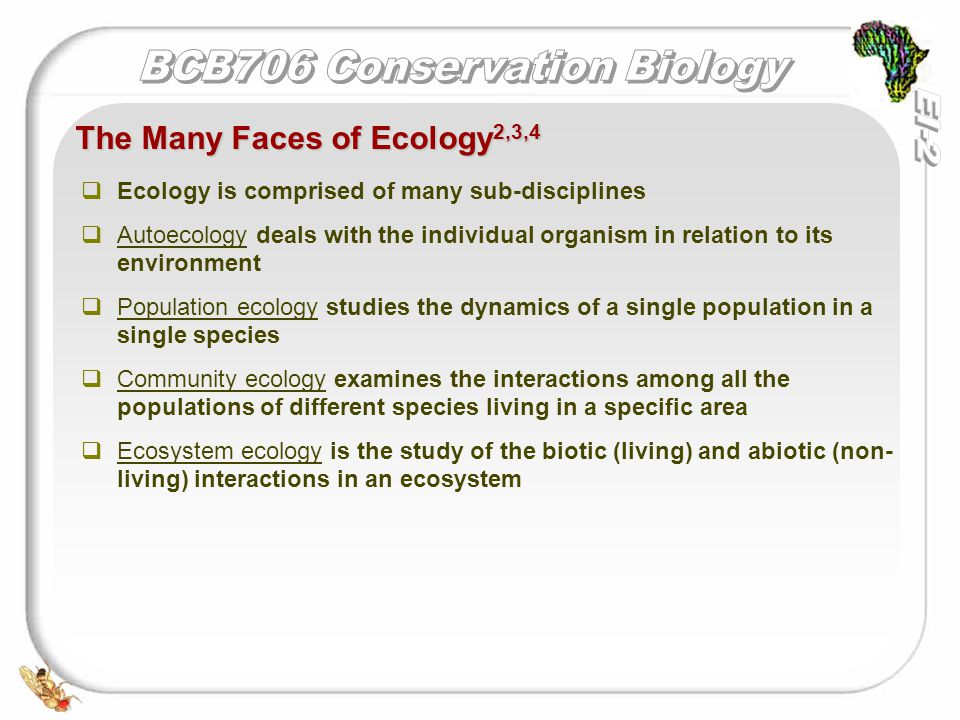   Ecology is comprised of many sub-disciplines   Autoecology deals with the individual organism in relation to its environment   Population ecology studies the dynamics of a single population in a single species   Community ecology examines the interactions among all the populations of different species living in a specific area   Ecosystem ecology is the study of the biotic (living) and abiotic (non- living) interactions in an ecosystem The Many Faces of Ecology 2,3,4