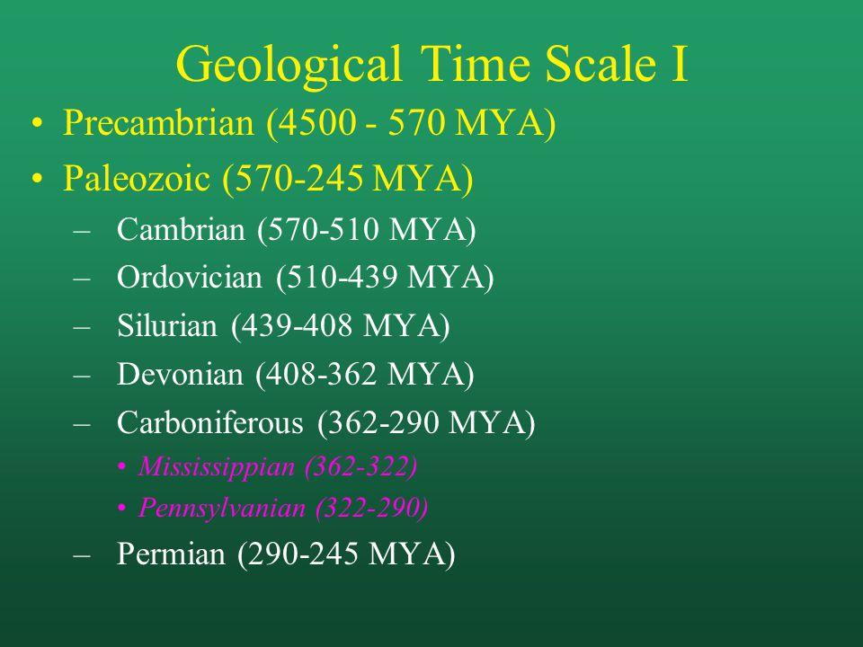 Geological Time Scale I Precambrian (4500 - 570 MYA) Paleozoic (570-245 MYA) –Cambrian (570-510 MYA) –Ordovician (510-439 MYA) –Silurian (439-408 MYA) –Devonian (408-362 MYA) –Carboniferous (362-290 MYA) Mississippian (362-322) Pennsylvanian (322-290) –Permian (290-245 MYA)