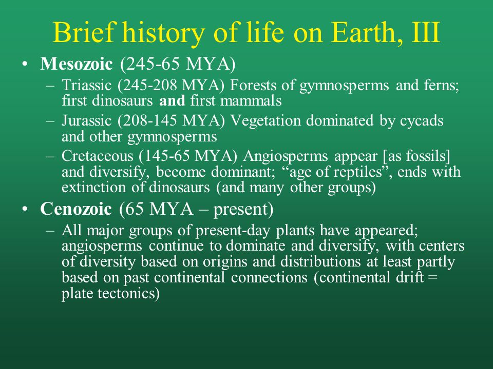 Brief history of life on Earth, III Mesozoic (245-65 MYA) –Triassic (245-208 MYA) Forests of gymnosperms and ferns; first dinosaurs and first mammals –Jurassic (208-145 MYA) Vegetation dominated by cycads and other gymnosperms –Cretaceous (145-65 MYA) Angiosperms appear [as fossils] and diversify, become dominant; age of reptiles , ends with extinction of dinosaurs (and many other groups) Cenozoic (65 MYA – present) –All major groups of present-day plants have appeared; angiosperms continue to dominate and diversify, with centers of diversity based on origins and distributions at least partly based on past continental connections (continental drift = plate tectonics)