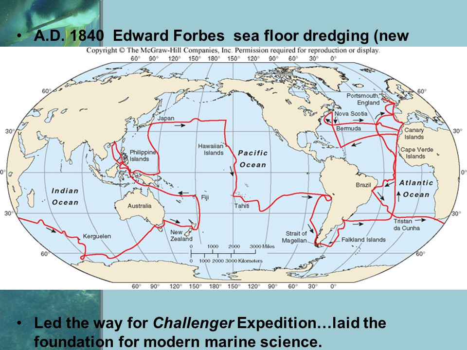 A.D. 1840 Edward Forbes sea floor dredging (new organisms) Led the way for Challenger Expedition…laid the foundation for modern marine science.