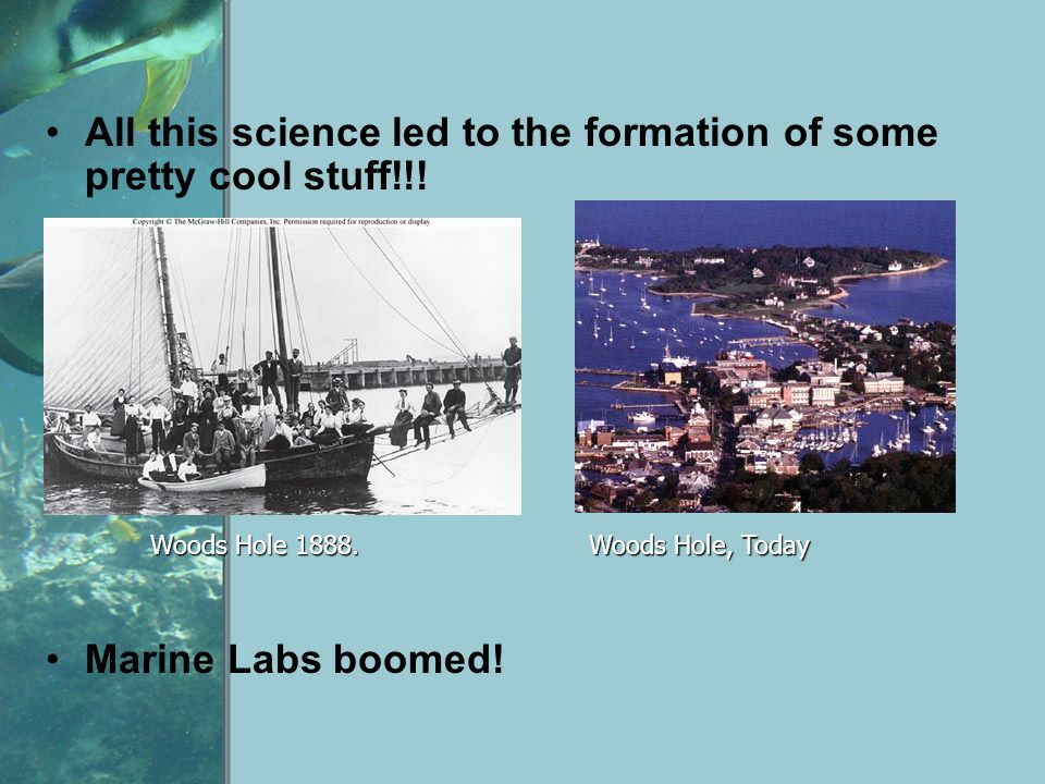 All this science led to the formation of some pretty cool stuff!!! Marine Labs boomed! Woods Hole 1888. Woods Hole, Today