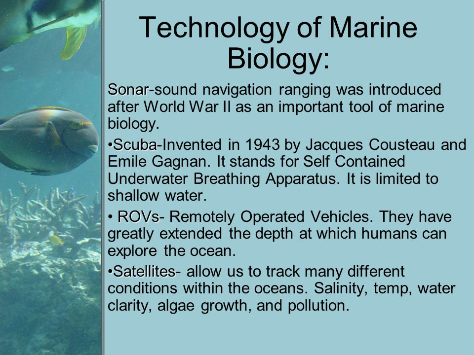 Technology of Marine Biology: Sonar Sonar-sound navigation ranging was introduced after World War II as an important tool of marine biology. ScubaScub