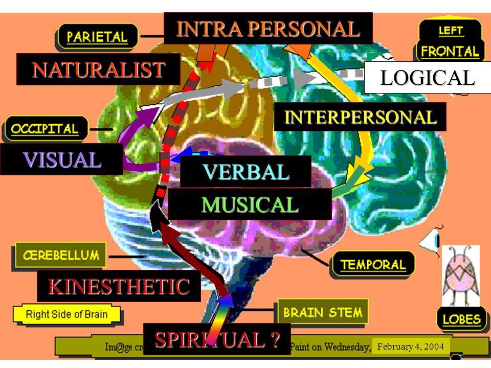 KINESTHETIC NATURALIST INTRA PERSONAL INTERPERSONAL MUSICAL VERBAL VISUAL SPIRITUAL .