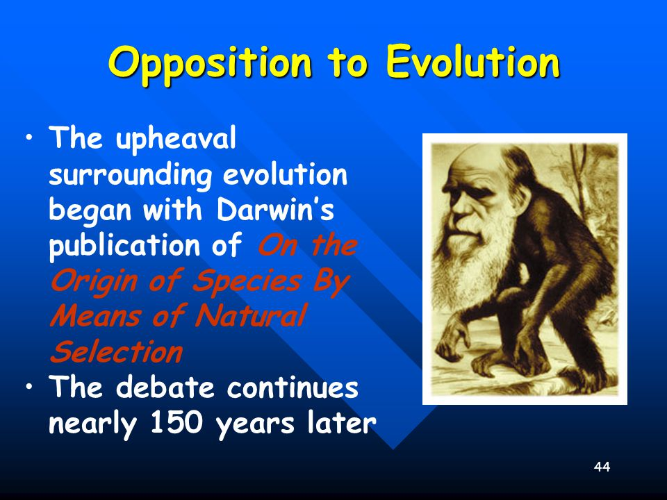 45 Theory of Evolution Today Supporting Evidence