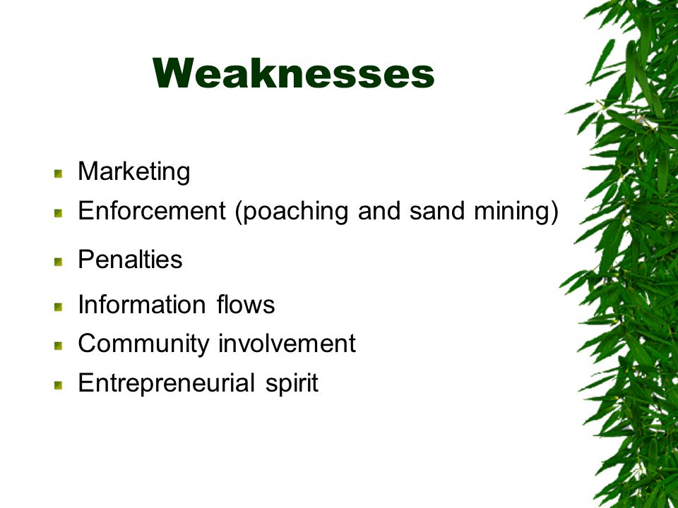 Weaknesses Marketing Enforcement (poaching and sand mining) Penalties Information flows Community involvement Entrepreneurial spirit