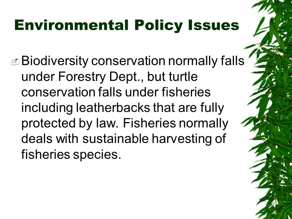 Environmental Policy Issues  Biodiversity conservation normally falls under Forestry Dept., but turtle conservation falls under fisheries including leatherbacks that are fully protected by law.