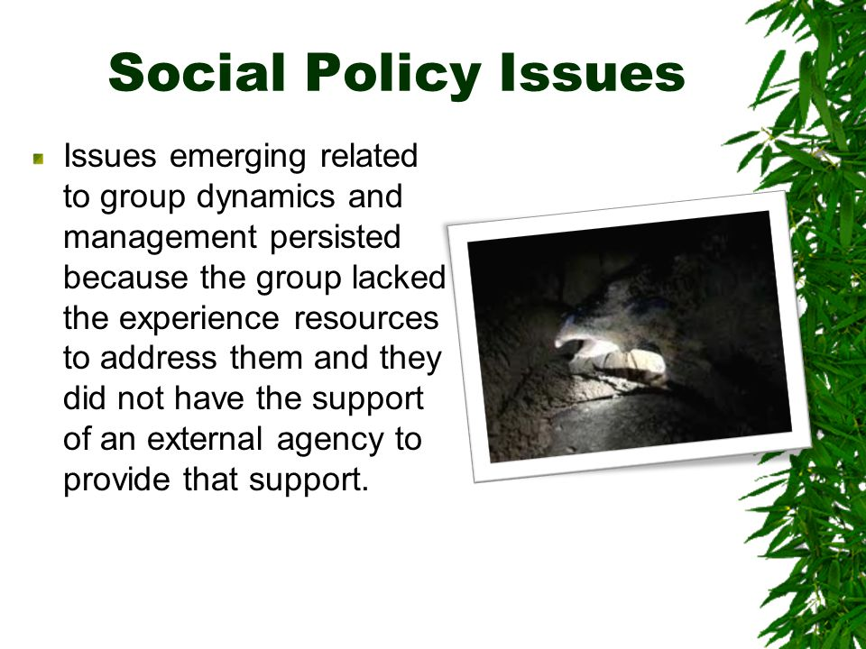 Social Policy Issues Issues emerging related to group dynamics and management persisted because the group lacked the experience resources to address them and they did not have the support of an external agency to provide that support.